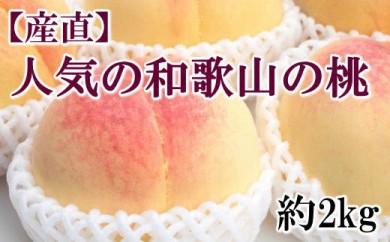 【産直・人気の特産品】和歌山の桃 約2kg・秀選品