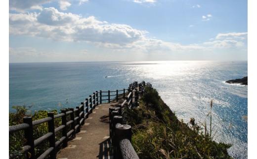 日向岬・馬ケ背 太平洋の水平線を広く見渡すことのできる景勝地であり圧巻の景色です