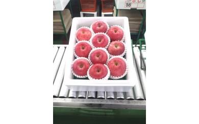 青森県産りんご CA貯蔵ふじ約3kg