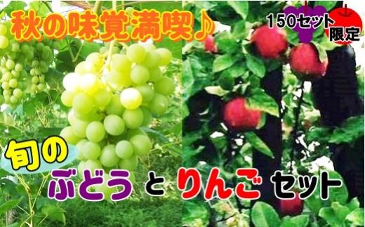 【数量限定・予約受付】秋の味覚満喫セット【旬のりんごとぶどうセット】 【484】