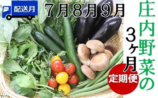 《7月から》【3ヶ月お届け】庄内野菜の定期便