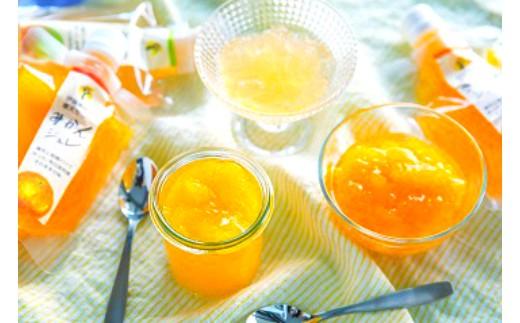 12 ピュアフルーツ寒天ジュレ ドリンクタイプ