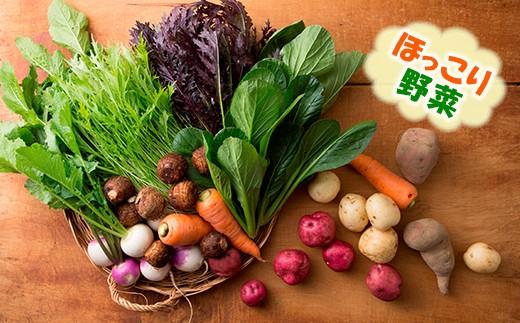 【010-025】おかもファームのほっこり野菜セット