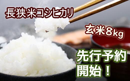 1-86【先行予約】長狭米コシヒカリ玄米8㎏(精米に変更可)