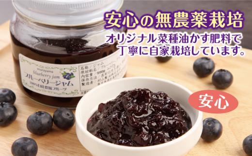 果実が元気に!自家製の菜種油粕を使用した無農薬栽培です。