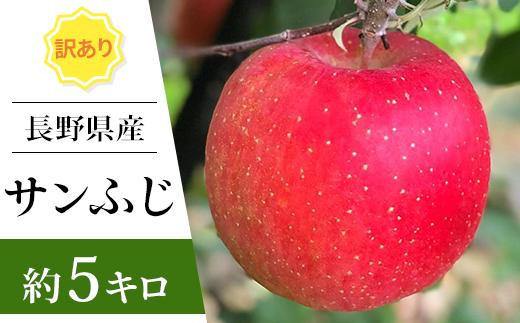J0394長野県産 訳ありサンふじ 約5キロ(2019年分先行予約)