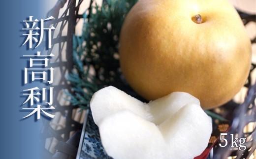AZ17 玉名産 新高梨 5kg