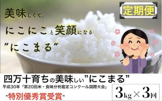 Sbmu-09 四万十育ちの美味しい「仁井田米」にこまる 3kg×3回の定期便。高知のにこまるは四万十の仁井田米