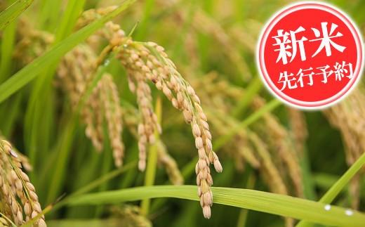 K14-1 米田(よなだ)の米 10kg