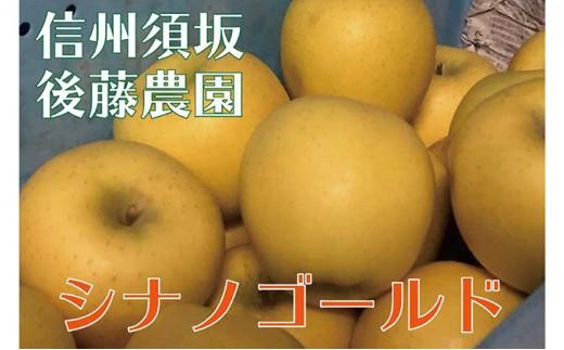 [№5657-2396]【後藤農園直送】大人気!シナノゴールド(りんご)約5kg(11~18玉入)