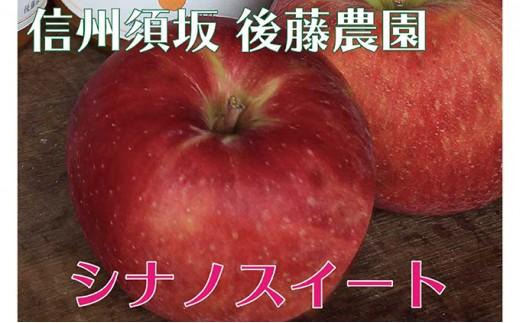[№5657-2395]【後藤農園直送】もぎたて!シナノスイート(りんご)約5kg(11~18玉入)