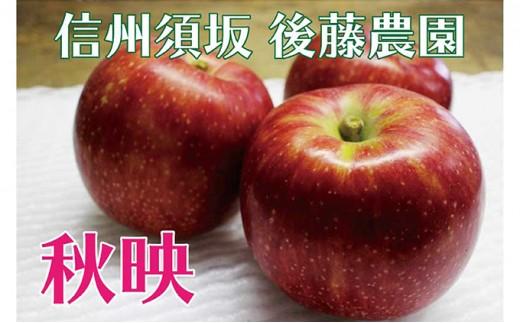 [№5657-2394]【後藤農園直送】もぎたて!秋映(りんご)約5kg(11~18玉入)