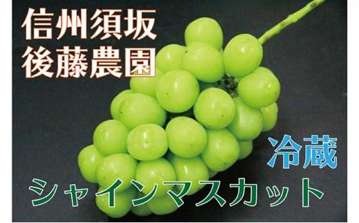 [№5657-2393]【後藤農園直送】シャインマスカット約1.2kg(2房・冷蔵品)