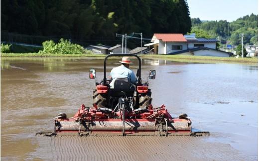 先ずは、田植え前の大事な作業…トラクターでしっかり耕耘した圃場を、水を張って均し、稲が根を張りやすい環境を作ります/代掻き