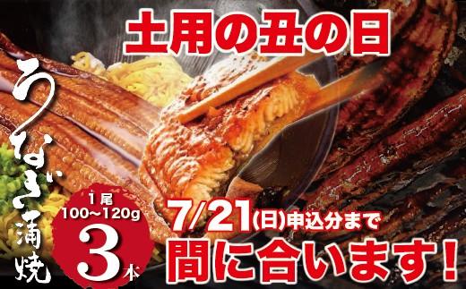 C531 【数量限定】熟成鰻料理と手打ち蕎麦「柳屋」鰻の蒲焼3尾セット