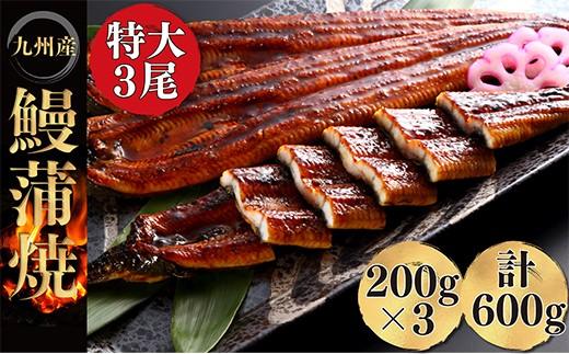 E01-10 極みうなぎ蒲焼3尾