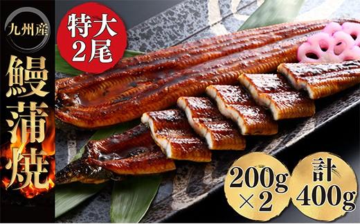 E01-09 極みうなぎ蒲焼2尾