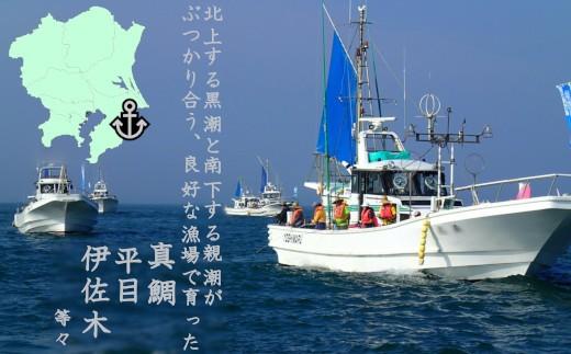 C001 釣り船乗船1名様(1回分)