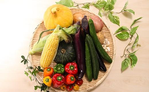 【12ヶ月定期便】かみす農産物直売所よりお届け!旬の野菜詰合せ(5~7品)