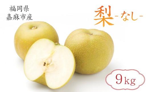 梨9kg九州りんご村九州産