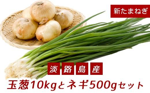【新たまねぎ】こうめいさんの玉葱10kgとネギ500gセット