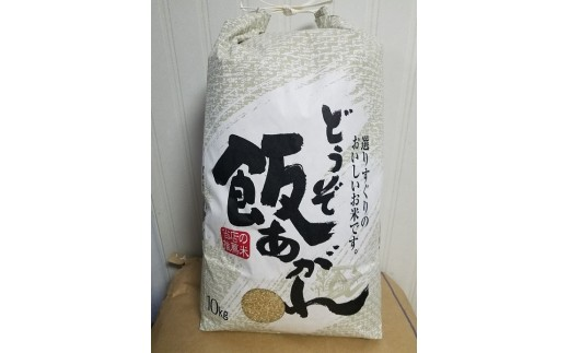 【令和元年 新米】佐賀県産 ひのひかり玄米10kg
