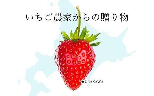 2017年8月に札幌ドームで行われた<なまらうまいっしょ!グランプリオールスター>にも登場した大人気のアイスクリームです!