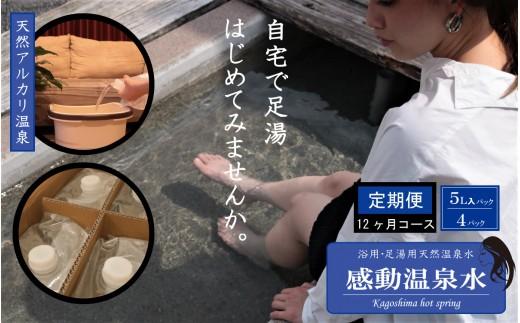 J-021 【定期便12ヶ月】感動温泉水5L×4本×12ヶ月定期便 自宅で簡単足湯