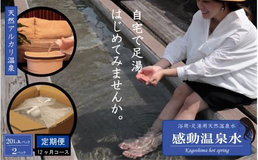 T-011 【定期便12ヶ月】感動温泉水20L×2本×12ヶ月定期便 自宅で簡単足湯