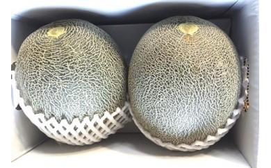 津軽産デリシー緑肉メロン(秀品大玉2個入れ)