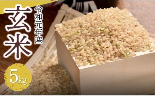 H5906令和元年産!玄米(こしひかり)