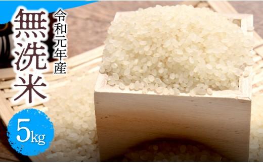 H5908令和元年産!無洗米こしひかり