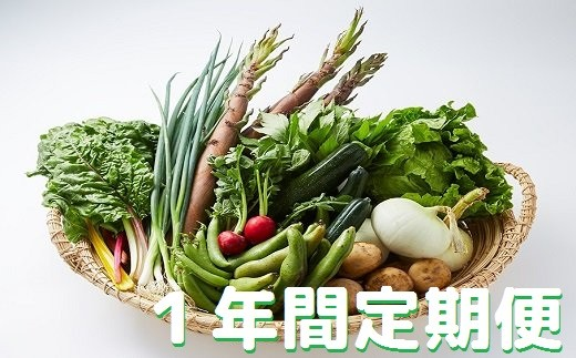 湯の花 旬の野菜セット1年間の定期便