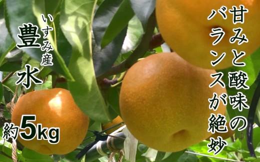 甘みと酸味のバランスが絶妙♪千葉県いすみ市の豊水梨5kg A619