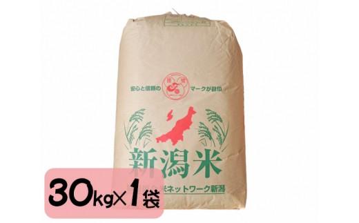 No.122 加茂市産 コシヒカリ玄米1等米 30kg / お米 こしひかり 一等米 新潟県