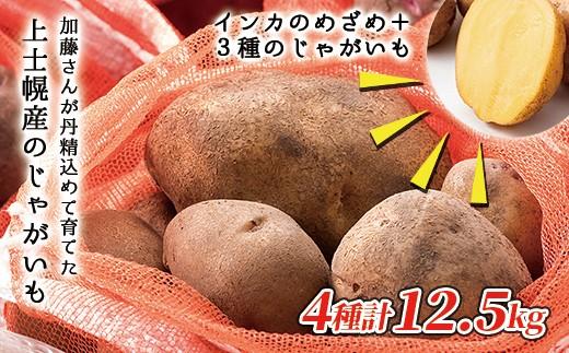 [010-V02]加藤さんのインカのめざめ&じゃがいも3種セット<計12.5kg> ◆2019年10月下旬発送開始予定