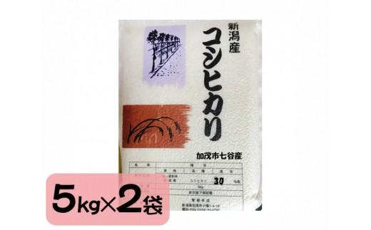 No.109 【10kg】加茂市七谷地区棚田米コシヒカリ / お米 白米 精米 こしひかり 新潟県