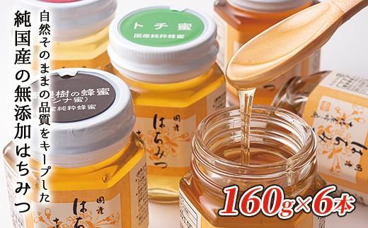 [015-Y01]十勝養蜂園 国産はちみつ食べ比べセット<160g×6本>