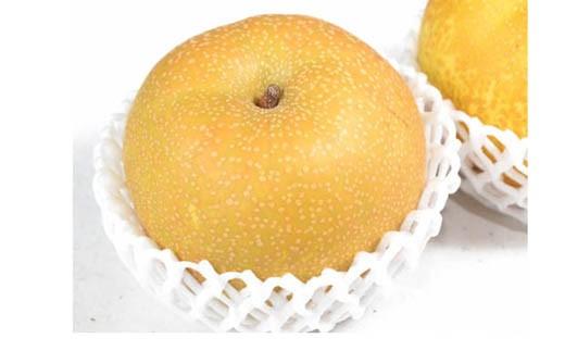 梨詰め合わせセット<約4.0kg:(勝)種子田農園> 31-STM04
