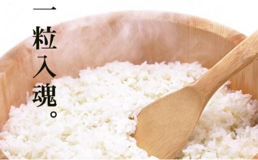 米飯加工のプロ「株式会社エザカ」が提供する手まり茶漬け
