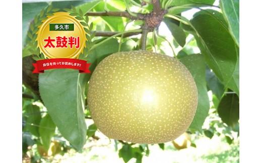 b-76 果物が苦手な人でも食べちゃう美味しさ!多久産の梨は数量限定です