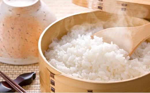 [№5810-0389]農家のつくったおいしいお米 コシヒカリ 5kg