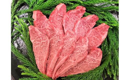 飛騨牛 ヒレ肉 焼肉用 稀少部位ヒレの最高ランク5等級  牛肉 和牛 飛騨市推奨特産品 古里精肉店謹製[D0073]