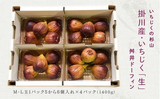 1169 掛川産・いちじく「生」×4パック 舛井ドーフィン M・L玉(1パック5から6個入×4パック)甘くて美味しい旬のイチジク♪いちじくの杉山