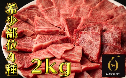 G8002 希少部位4種焼き肉セット2kg【匠牧場】おおいた和牛(特製タレ付)