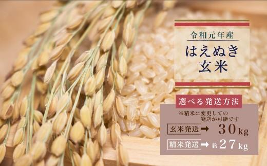 予約受付中 令和元年産 はえぬき玄米30kg