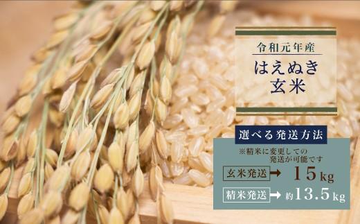 予約受付中 令和元年産 はえぬき玄米15kg