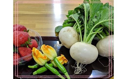 季節折々の野菜をおいしい菜園からお届け