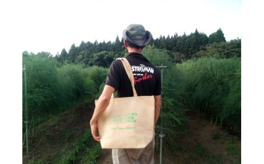 夏採りアスパラガス約1.2kg+保冷エコバック