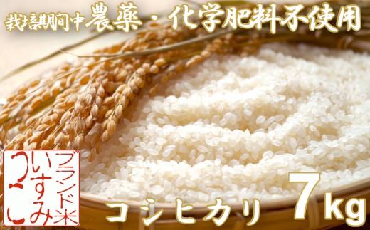 A623 農薬・化学肥料不使用コシヒカリ いすみっこ 白米7㎏ R元年産